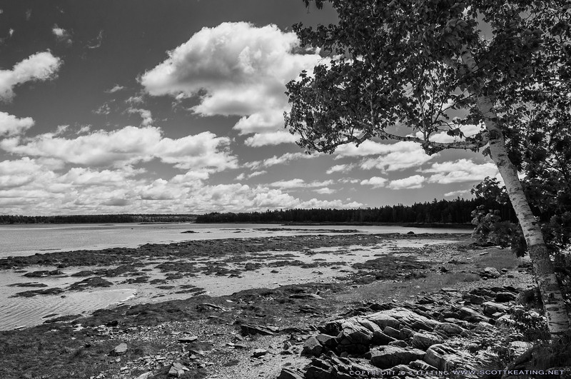 View from Thompson Island, Acadia National Park - Trenton, Maine