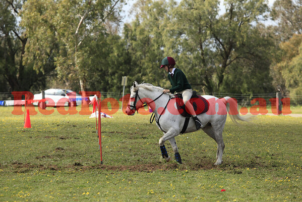2013 09 08 Active Riding Championships Novelties