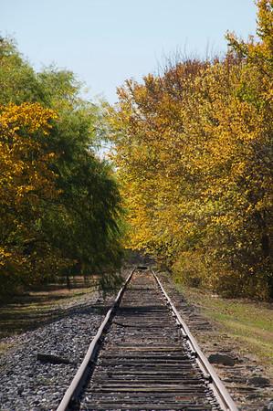 Old Tracks in Allen