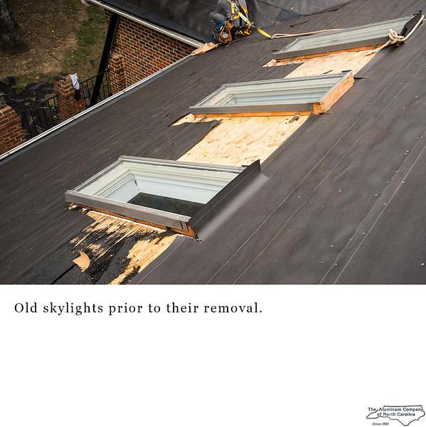 skylight01Lr.jpg