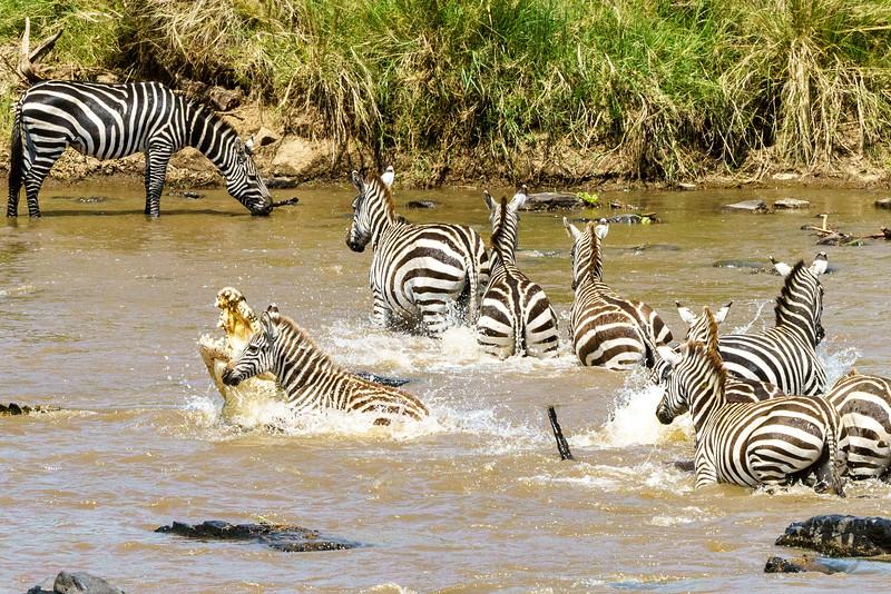 Kenya 2015-03794-2.jpg