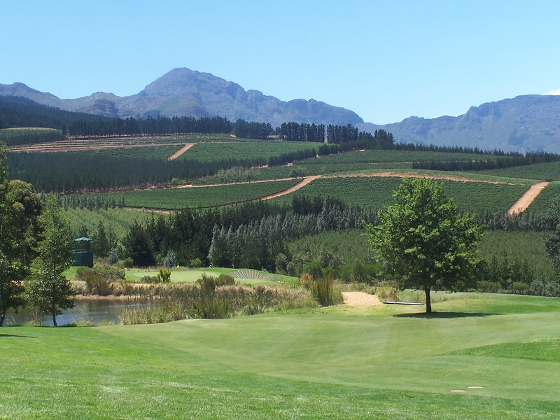 South Africa 067.jpg