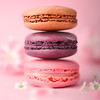 Three Macarons - Pretty in Pink