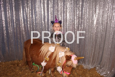 Hollywild Unicorn Photos - 010120