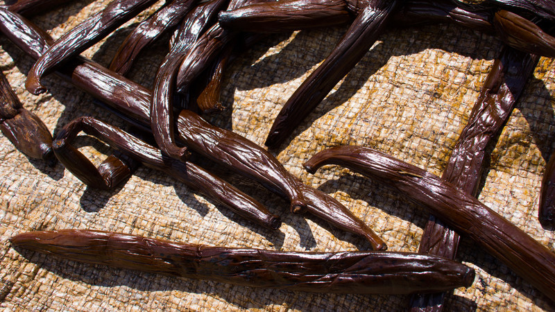 Up Close and Personal with Vanilla Beans