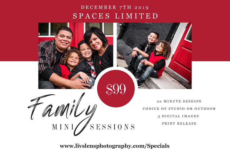 Family Mini Sessions 2019.jpg