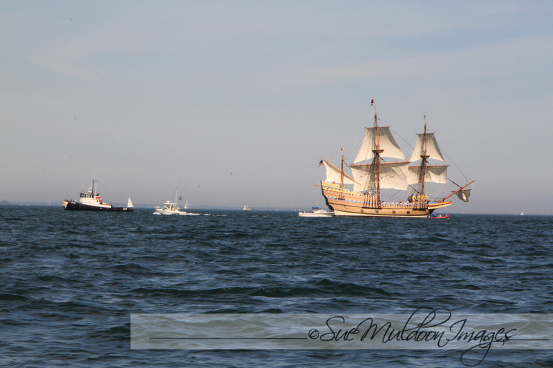 Mayflower 2020 New London -197.jpg