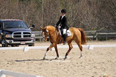 2011-02-20 USEA Horse Trial
