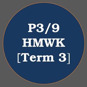 P3/9 HMWK T3