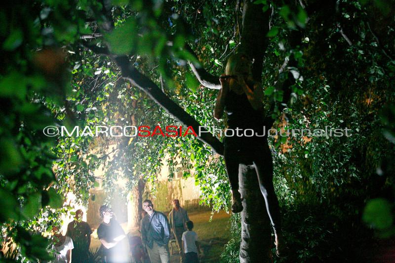 0112-ZooArt-03-2012.jpg
