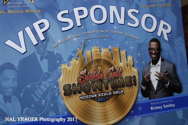 VIP Sponsor Reception 2017