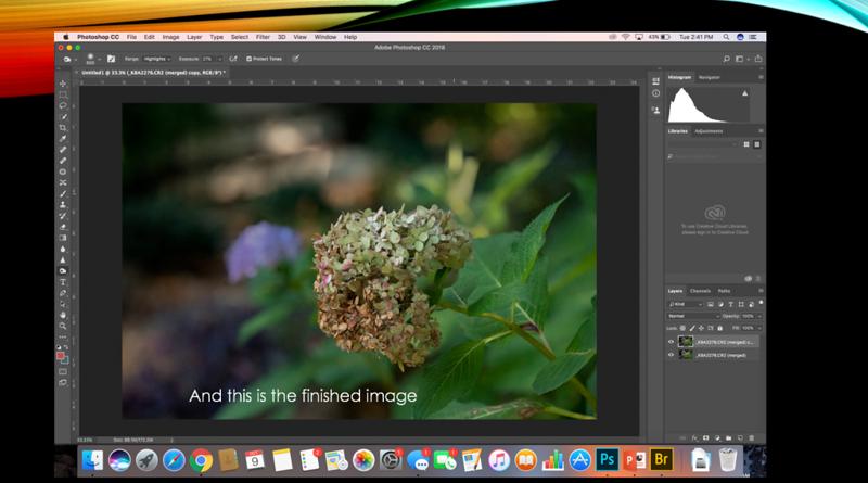 30 focus stack.jpg.png