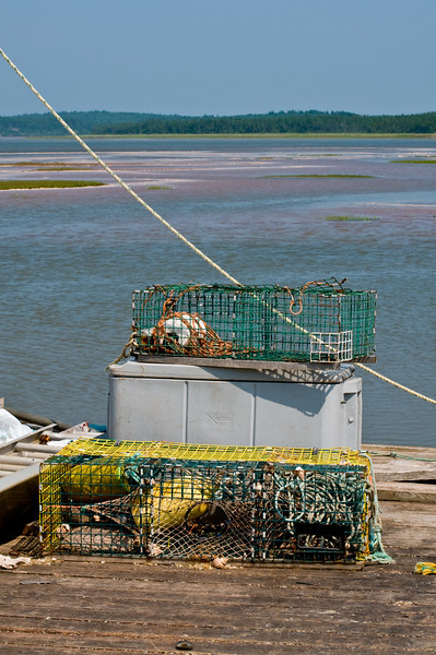Some kind of shellfish traps... with buoys!