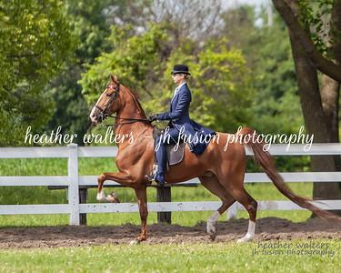 Glen Valley Classic Horse Show 2020