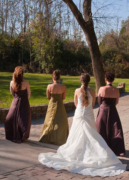 Royer Wedding, Stone Arch Bridge Lewistown, PA img_5964C.jpg