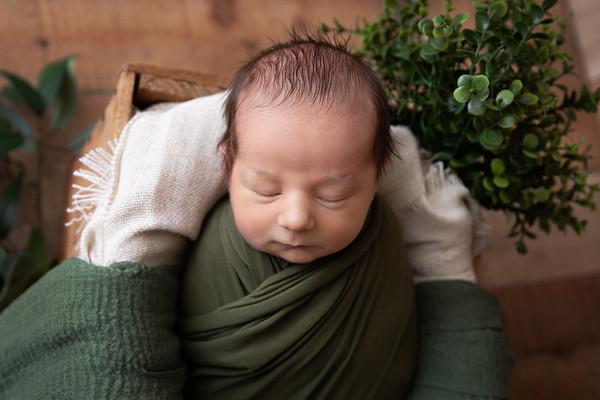 C's Newborn Session (March)