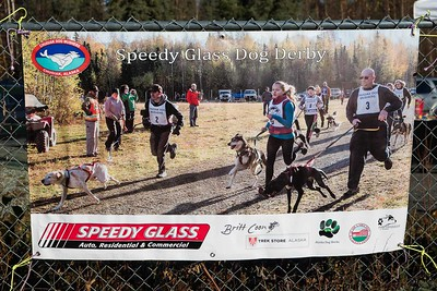 Speedy Glass Dog Derby