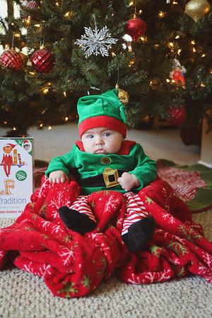 Cobb Family Christmas Portraits 2014