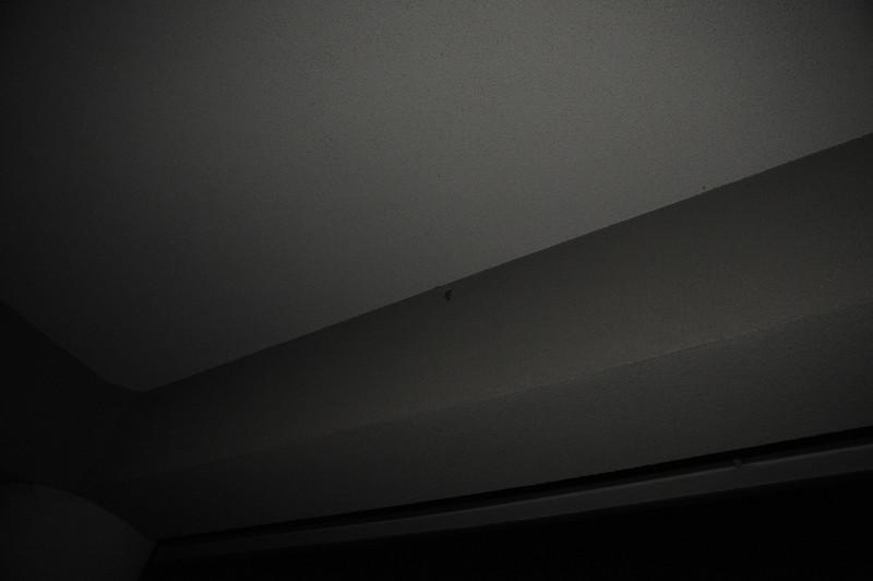 082_6370.JPG