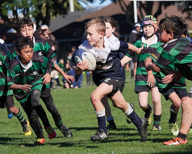 20190831-Jnr-Rugby-041.jpg
