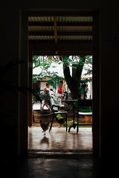 Rarotonga-Cook-Islands-2014-41.jpg