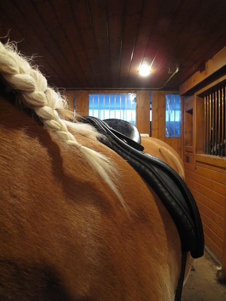 Ketterer Saddle Fit