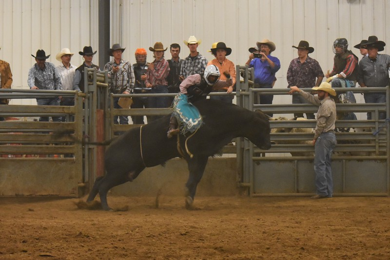 Buckers Unlimited Bull Riding