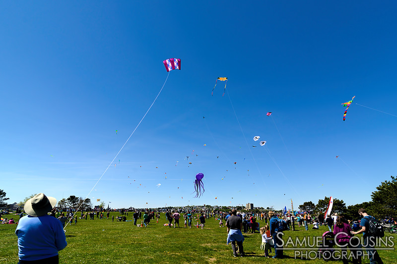 Bug Light Kite Festival 2017