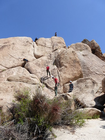 4/7/2017-4/8/2017 Joshua Tree Rock Climbing2
