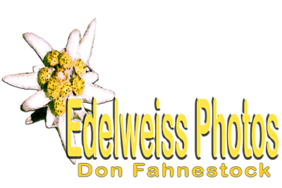 Edelweiss Photo Cart Branding.png