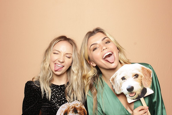 12.13.19 | The Farmer's Dog Holiday Party