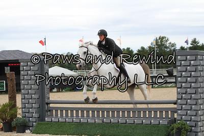 Saturday: 3' Children Hunter Horses & Suitable Hunters