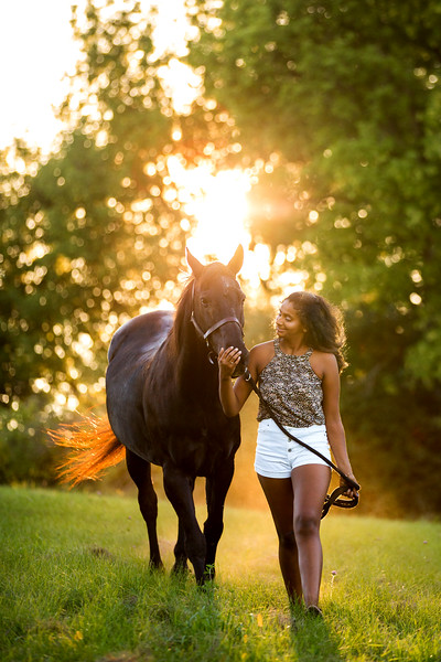 Pinty and Midnight- Equine