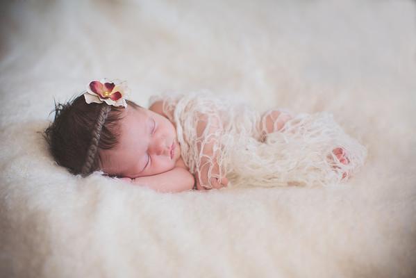 Newborn / Haven