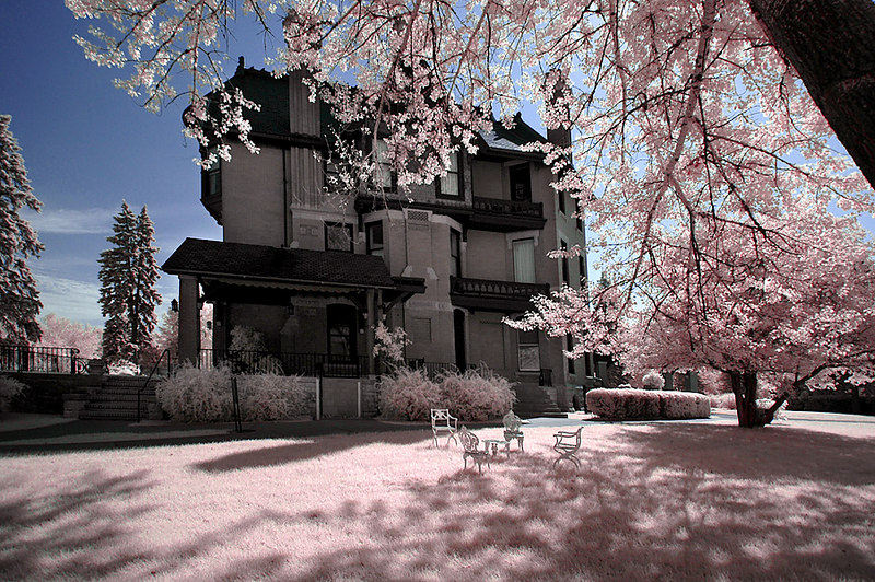 Infrared - July 3, 2006