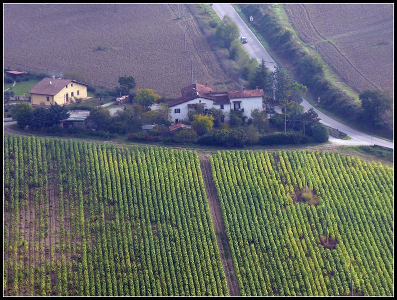 2013-10 Montone 016.jpg