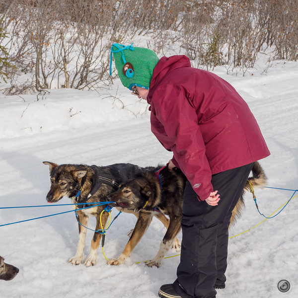 20190325_Blaire_and_Liz_Mushing_21.jpg