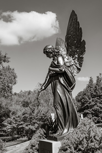 Angelic, Lexington Cemetery #7