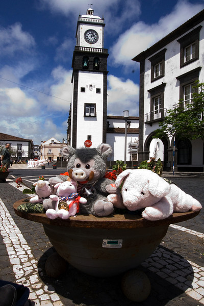 Gang in the Azores 2.jpg