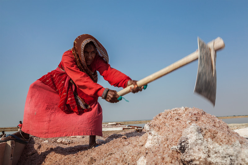 Women mining salt at lake Sambhar, Rajasthan, India