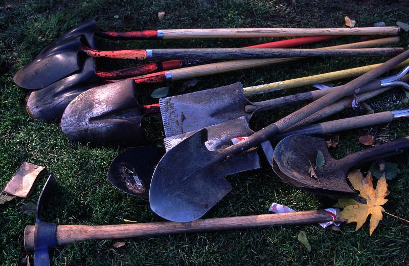 Shovels.jpg