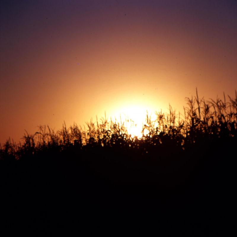 sunrisegalena.jpg