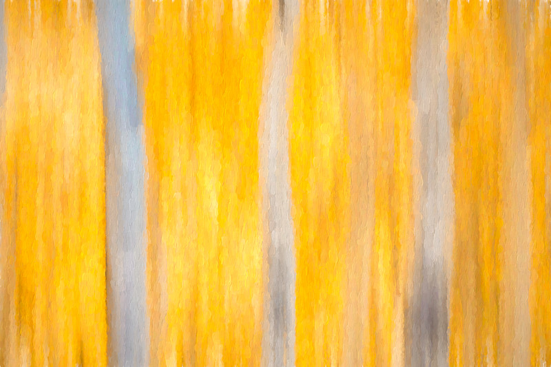 Aspen Abstract #4