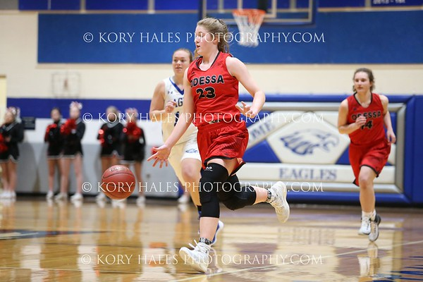 2016-2017 Basketball Season--High School Girls