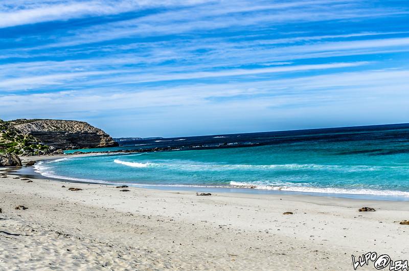 Australia-264.jpg