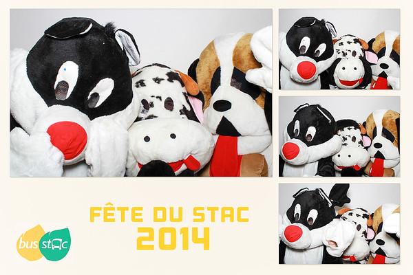 Fête du Stac 2014