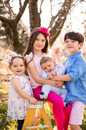 Lapetina Family