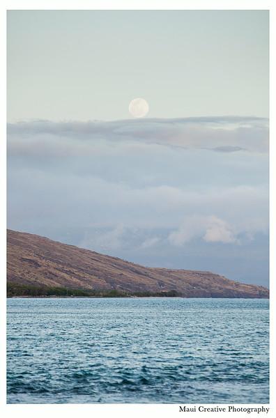 Maui_Wedding_Photographers_Olowalu_Plantation_House_463.jpg