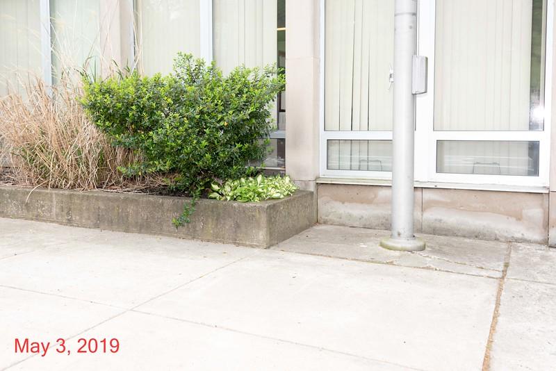 2019-05-03-US Post Office-007.jpg
