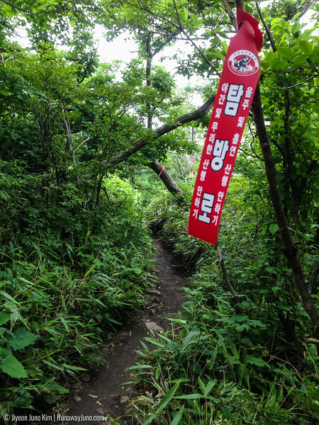 Walking trails in Jirisan National Park